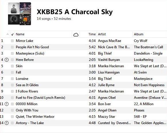 CD25 A Charcoal Sky